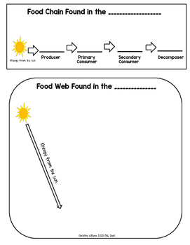Ecosystem Food Chain and Food Web Graphic Organizer