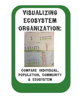 Ecosystem Organization:Compare Individual, Population, Com