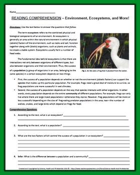 Ecosystem Worksheet