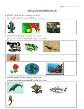 Ecosystem - environment assessment