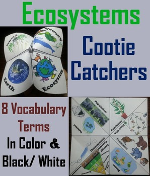 Ecosystems Activity: Biomes and Habitats
