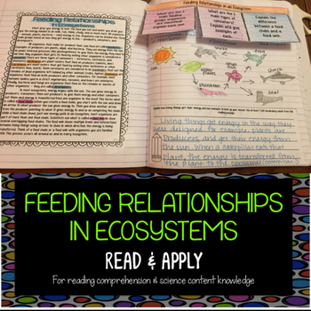 Ecosystems: Feeding Relationships Reading Comprehension In