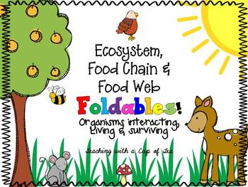 Ecosystems, Food Chains & Food Webs Foldables {A foldable
