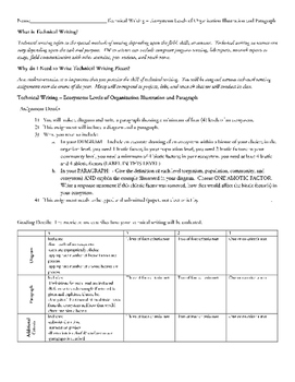 Ecosystems - Levels or Organization Illustration and Paragraph
