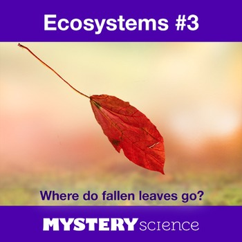 Ecosystems NGSS:Decomposers ❤ BUNDLE:Activity, Reading,Ass