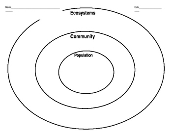 Ecosystems, Population, Community Graphic Organizer