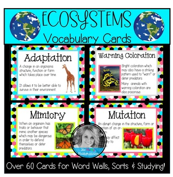 Ecosystems Vocabulary Cards-Great for Word Walls!
