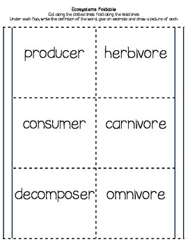 Ecosystems Vocabulary Foldable