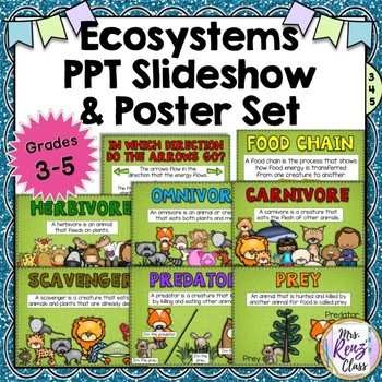 Ecosystems Vocabulary PowerPoint Slideshow & Posters for G