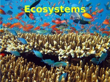 Ecosystems - basics and adaptations