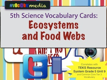 Ecosystmes & Food Webs | 5th Grade | Vocabulary Cards