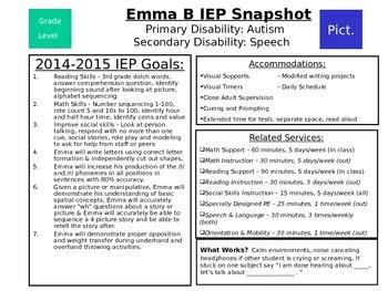 Editable IEP At a Glance/Snapshot