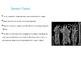 """Edith Hamiliton's """"Demeter and Dionysus"""" PowerPoint"""