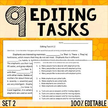 Editing Tasks - Grammar Practice 2