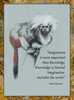 Einstein Poster Quote 3