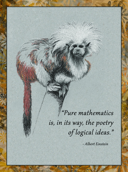 Einstein Poster Quote 4