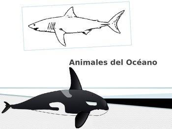 Dia Mundial del Agua- Animales del Océano-Power Point- Ani