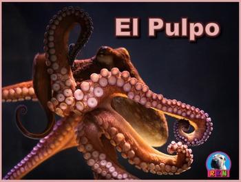 El Pulpo - Presentación en PowerPoint y Actividades