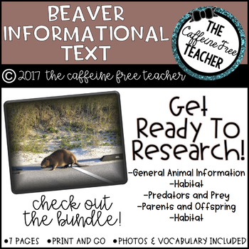 Elementary Animal Research Information- Beavers!
