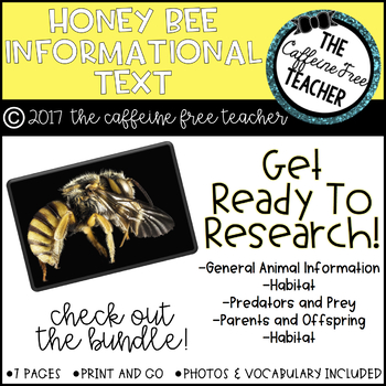 Elementary Animal Research Information- Honey Bee!