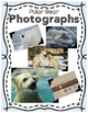 Elementary Animal Research Information- Polar Bear!