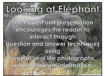 Elephant - Interactive PowerPoint presentation