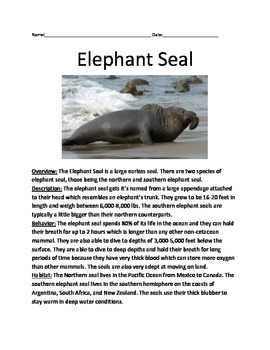 Elephant Seal - Review Article Lesson - Information facts
