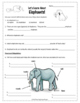 Elephants Webquest Animal Adaptations Research Activity