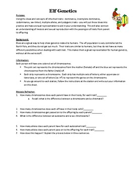 Elf Genetics Activity