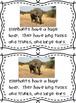 ELEPHANT ACTIVITIES