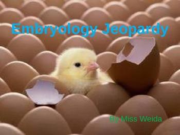 Embryology Jeopardy
