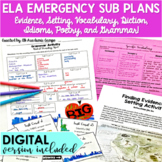 Emergency Sub Lesson Plans for Middle School