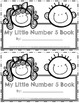 Emergent Easy Interactive Number Book: Number 5