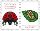 """Emergent Easy Reader: """"The Life Cycle of a Ladybug"""""""