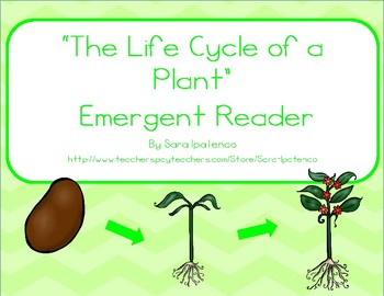 """Emergent Easy Reader: """"The Life Cycle of a Plant"""""""