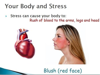 Emotions  - Reactions to Stress w/worksheet (POWERPOINT)
