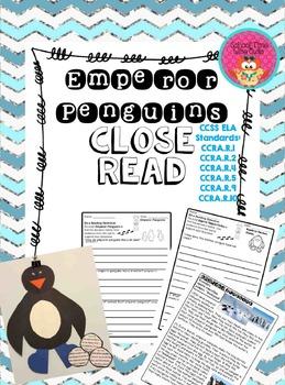 Emperor Penguin Close Read