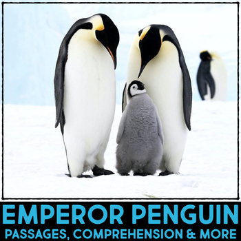 Emperor Penguins: Informational Article, QR Code Research