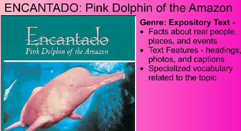 Encantado: Pink Dolphin of the Amazon Vocabulary Presentation