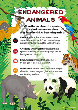 Endangered Animals Classification Poster