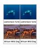 Endangered Species Matching Cards-Montessori