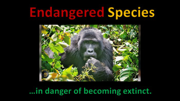 Endangered Species (animated)