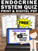 FREE Download Human Body Endocrine System Video and Worksh