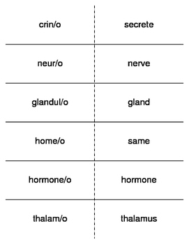 Endocrinology Combining Forms Flash Cards
