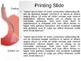 Endoscopy PPT Template