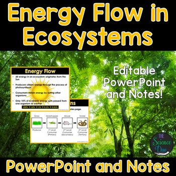 Energy Flow In Ecosystems PowerPoint and Notes