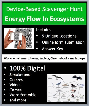 Energy Flow in Ecosystems - Device-Based Scavenger Hunt Ac