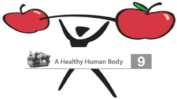 Engage NY 2nd Grade Module 10 The Human Body - Lesson 9
