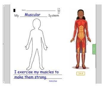 Engage NY First Grade ELA Domain 2 The Human Body Lessons