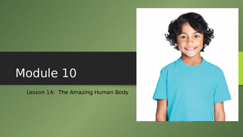 Engage NY:  Module 10 - Lesson 1A:  The Amazing Human Body